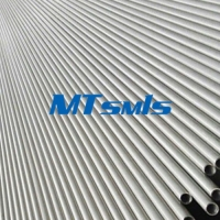 Quality 6000MM SMLS ASTM A789 S31803/2205 Duplex Steel Tube for sale