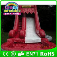 China Factory Directly sell amusement park inflatable slide