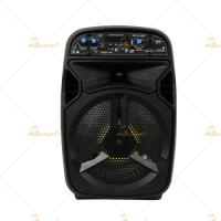 Quality Remote Control Active PA Speaker 5.5 Inch With Head Microphone for sale