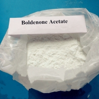 Quality Boldenone Acetate High Purity Raw Steroid White Powder Boldenone 17-Acetate For Bodybuilding CAS 2363-59-9 for sale