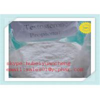Quality Test PRO Anabolic Steroids Testosterone Propionate for Muscle Building CAS No 57-85-2 for sale