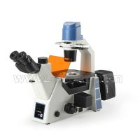 Buy cheap Trinocular Fluorescence Microscope For Laboratory A16.0912-L from wholesalers
