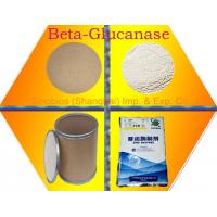 Quality Baking Xylanase Food Grade Powder 20,000u/g for Szym-XY20BA GMP ISO Certificated for sale