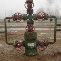 Quality High Pressure Water Injection Wellhead Equipment with 52/65mm Nominal Diameter for sale