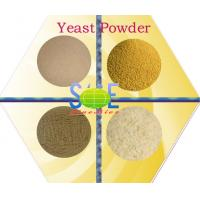 Quality Yellowish Feed Grade Dry Yeast Powder CAS 8013-01-2 With Special Aroma SYE-PO50 for sale