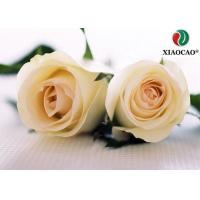 Buy cheap Bulk Pure Damask Rose Oil Raw Material Flowers Eliminates Depression from wholesalers
