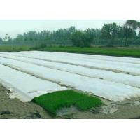 China 100% PP Spunbond Non Woven Fabric , Non Woven Landscape Fabric For Winter on sale