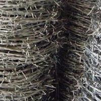China PVC-coated/Galvanized Barbed Iron Wire with Two Strands and Four Points on sale