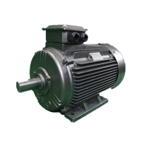 Quality YE4 80M1-2 0.75KW LV Three Phase Asynchronous Motor IC411 Cooling for sale