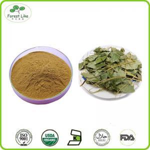 High Quality Epimedium Extract Icariin 98% Icariin 98% Powder of