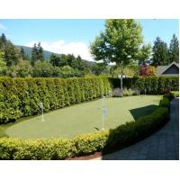 Quality synthetic grass for backyard putting green for sale