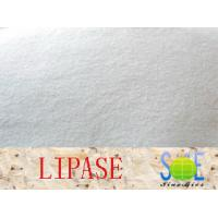 Quality Lipase Enzyme Supplement 90000u/g Enzymes In Food Industry Szym-LIP90BA for sale