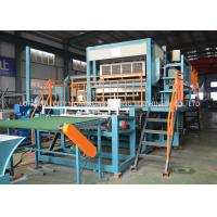 China Customized Color Pulp Egg Tray Equipment Recycled Paper Processing Machine on sale