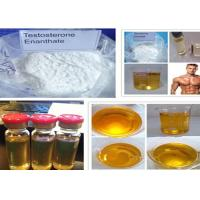 Quality Testosterone Steroid Test Enanthate Powder CAS 315-37-7 for Muscle Gain for sale