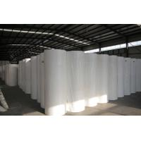 High Strength Polyester Spunbond Fabric , Non Woven