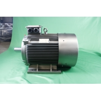 Quality 55kW IP55 Asynchronous Motor 3 Phase YE3 280M 6 Pole Class F for sale
