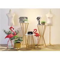 China Chromping Finish Metal Display Rack 500*1130mm For Clothes Shop / Shoes Shop on sale