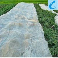 Quality light weight white color pp spunbond non woven fabric for agriculture for sale