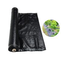 Quality Recyclable Black Plastic Ground Cover , PP Woven Fabric Roll For Agriculture / Garden for sale