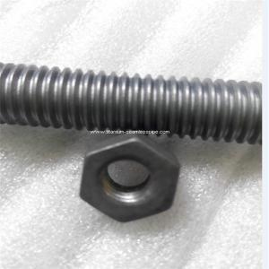 Quality Molybdenum screw Molybdenum bolt nut for sale