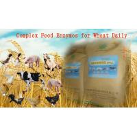Quality Yellowish Powdered Complex Poultry Feed Enzymes For Wheat Daily Diet Szym-nutriWH for sale