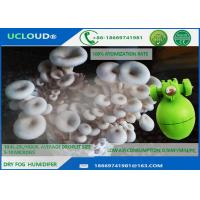 Silky Dry Fog Humidity Control Humidifier For Mushroom Moisture Control