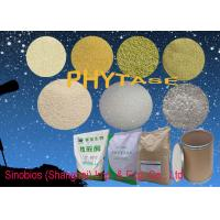 Quality Animal Universal Nutrition Supplements Enzyme Phytase Granular Feed Grade Szym-PHY10GH for sale