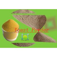 Quality Animal Feed Additive Nutritional Yeast Powder With 40% Crude Protein SYE-PO40 for sale