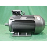 Quality YE3 315L2 6 Pole Class F Asynchronous Electric Motor 3 Phase 132kW IP55 for sale