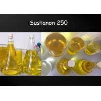 Quality Healthy Bodybuilding Supplements Sustanon 250mg/Ml for Gaining Lean Muscle for sale