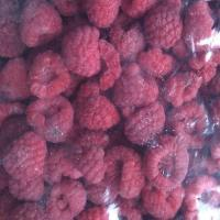 Quality ISO Certified IQF Frozen Food Individual Quick Frozen Raspberry Sweet And Delicious for sale