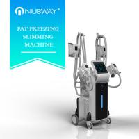 Quality 2500w big power standing cryolipolysis with 4 different size handles for whole body and double chin treatment for sale