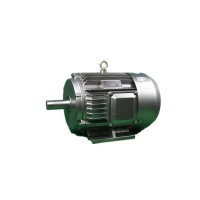 Quality 1.1kW Three Phase Asynchronous Motor YE3 80M2-4 IMB3 Mounting for sale