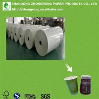 China PE paper for paper cups on sale
