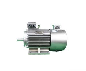 Quality 92.4% High Efficiency 3 Phase Induction Motor YVFE3 160L-2 18.5kW for sale
