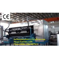 Quality Fully Automatic Egg Tray Machine with CE Certificate for sale
