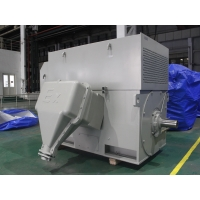 Quality 6kV IP54 Class F High Voltage AC Motor 2500kW Asynchronous Induction Motor for sale