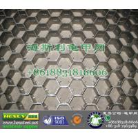 Quality 309 Anchor Mesh, Hex Mesh for sale