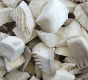 China Frozen Mushrooms / IQF Oyster Mushroom/ Shiitake Mushroom on sale
