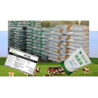 Quality Livestock Feed Additives Phytase Powder Enzymes For Poultry Feed Szym-PHY10P for sale