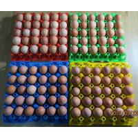Quality 30 holes Plastic egg tray/ plastic mould product for sale