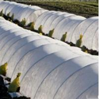 Quality 17g 3% UV pp spunbond non woven fabric for Agricultural weed-control fabric for sale