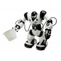 Quality RC Robot----Roboactor for sale