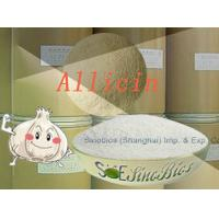 Quality White Feeding Garlicin Powder Purity 30% Min. SBC-ALL30 Little sulfide Content for sale