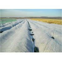Quality 3% UV pp spunbond non woven fabric for crop cover for sale