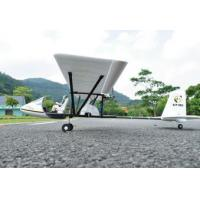 China Large fashionable appearance nique high-scale CRP airframe design RC electric Model planes on sale