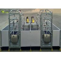 Welding Pig Farrowing Crate , Turn Around Farrowing Crates PVC Fence