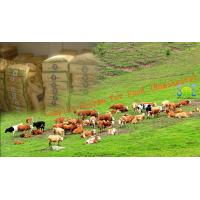 Quality Efficient Complex Enzyme Feed Additive Powdered Nutrition In Ruminants Szym-nutriRUM for sale