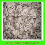 Quality Fungus (fresh oyster mushroom) for sale