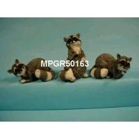 Quality Polyresin Racoons for sale